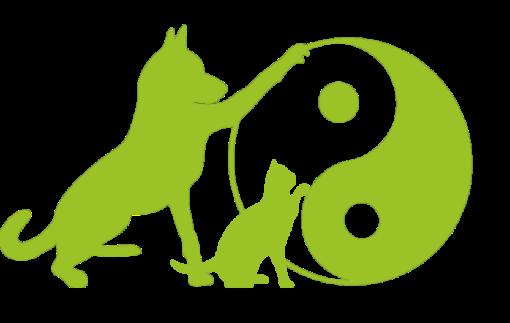TCVM für Hunde und Katzen